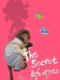 宠物的秘密生活
