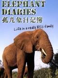 BBC大象日记第1季