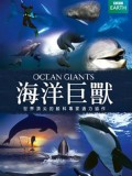 BBC海洋巨兽